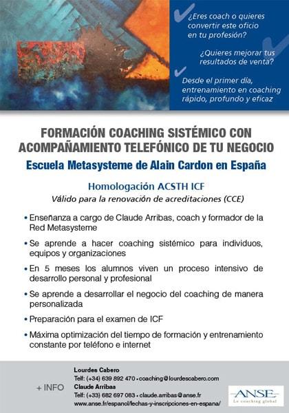 Formación en Coaching Sistémico